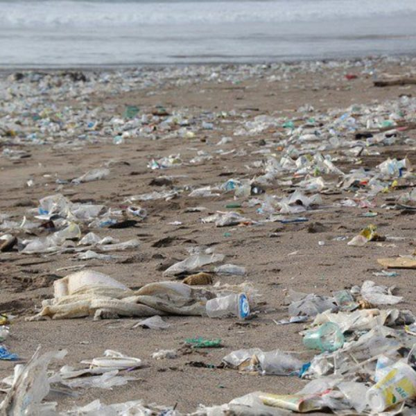 Plastic Beach Waste