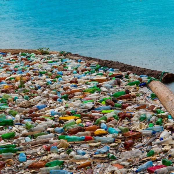 Plastic Bottles by the sea